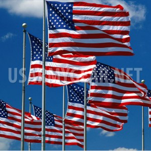 3'x 5'x8' Embroidered Star American US USA United States Nylon Flag